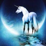 unicorn nedir